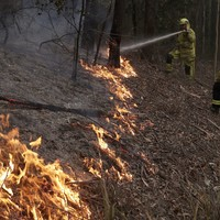 Australia to pay 'whatever it takes' to deal with wildfires