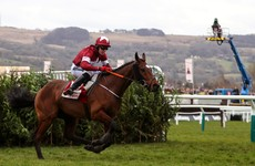 Elliott: Tiger Roll 'is in great nick' and 'will definitely make' Cheltenham