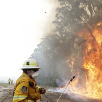 Australian wildfires: new evacuation notices issued as area the size of Ireland now scorched by blazes