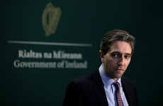 'This government's race is firmly ran': Independent TDs plan no-confidence motion in Simon Harris