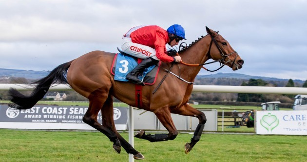 Envoi Allen: will horse racing's rising star go for the Champion Hurdle?