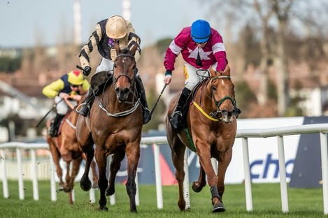 Bellshill sees off Road To Respect in last year's Irish Gold Cup.