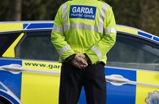 Garda probe under way after human remains found in north Dublin