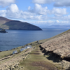 Hundreds of people apply for position to manage coffee shop and cottages on remote Kerry island