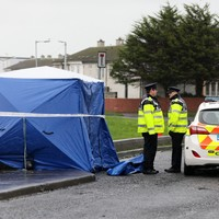 Fears for missing 17-year-old boy as gardaí seek to identify body parts dumped in bag