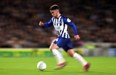 'His attributes are unique' - Brighton boss says Irish teen star Connolly must be managed carefully
