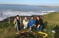 Another lost World War II ÉIRE sign has been discovered at Wexford's Hook Head