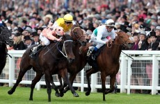 Black Caviar takes Diamond Jubilee Stakes despite scare
