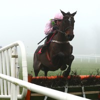 Unstoppable Benie skates to 21-length win in Galmoy Hurdle