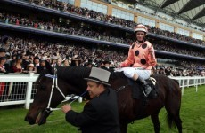Black Caviar 'pulled up lame' at Ascot