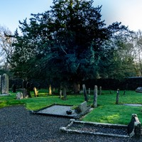 Kerry woman's body exhumed and reburied after being buried in wrong grave following mix-up