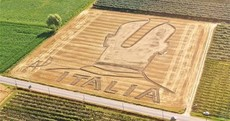 Here's your 'Mario Balotelli tribute in a crop circle' pic of the day