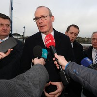 Coveney claims Brexit will 'dominate Irish politics' as UK prepares to leave the EU tonight