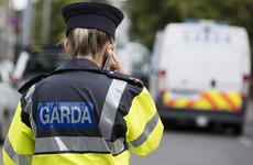 'Brutal attack': Gardaí treating serious assault at Newbridge train station as possible hate crime