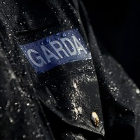 Garda injured and six arrested during rally against hate speech law