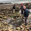 Archaeologist believes crannóg site has been discovered in Co Galway