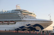 At least 61 people on cruise ship off Japan coast test positive for coronavirus