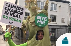 Woman dressed as celery ejected from Kerry polling station