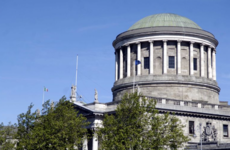 Dáil pigeons, Four Courts rats and museum mice among dozens of pest callouts to OPW sites