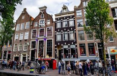 Amsterdam has banned tour groups from sex workers' windows in red light district