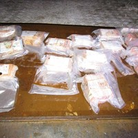 Revenue seizes €280k in cash from freight trailer in Rosslare