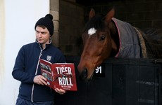 Let the Tiger roar: History likely to weigh heavy on racing's most perplexing success story