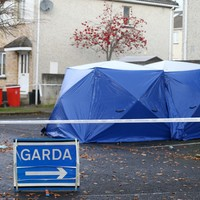 Two men arrested over fatal shooting where man's body was found in burning car in Lucan