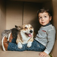 Am I being a bad parent... by not getting a family pet?