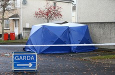 Woman arrested over fatal shooting where man's body was found in burning car in Lucan