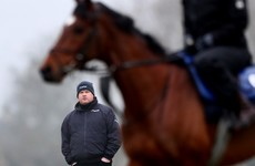 Faith in Samcro, phonecalls from The Boss, and why 'forgotten horse' Delta Work is made for the Gold Cup