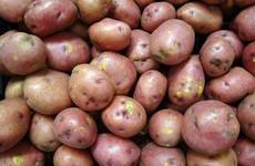 Poll: How often do you eat potatoes?