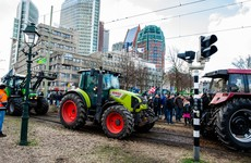 Dutch farmers bring tractors into city in protest over planned emissions policy