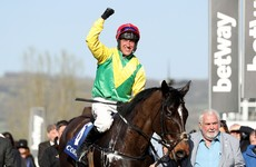 Magic Cheltenham memories as Power gets set this year with contenders for Harrington and Tizzard
