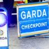 Garda appeal for witnesses after man (40s) dies in van crash