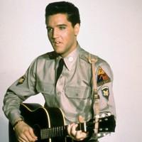 Elvis fans halt crypt auction