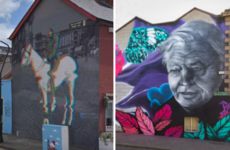 Dublin City Council starts legal bid to remove 'Horseboy' and David Attenborough murals