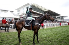 Expert view: How you should view these 5 Cheltenham favourites