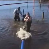 'She won't kiss me tonight': Minister hailed for wading into flood water to fix pump