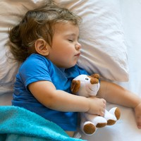 Offerwatch: €9.99 Disney duvets at Aldi, plus more deals for your little ones this week