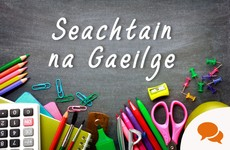 Opinion: This Seachtain na Gaeilge, we should celebrate the rise of the Gaelscoil Generation