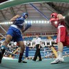 Olympic boxing qualifiers, complete with Italian team, due to take place in London as scheduled