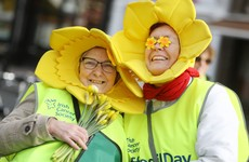 Irish Cancer Society expects to take 'huge hit' financially after cancelling Daffodil Day