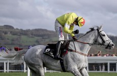 Champion Chase upset as Politologue turns in flawless performance