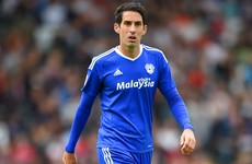 Cardiff City legend Peter Whittingham hospitalised with head injuries after fall at a pub