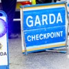 Gardaí launch investigation after horse injured in sulky crash in Limerick