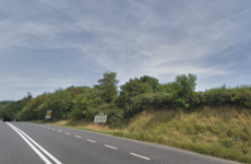 Gardaí appeal for witnesses after man (20s) dies in Co Louth crash