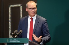Irish people travelling abroad should return 'as soon as possible', Coveney advises