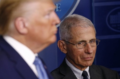 Anthony Fauci looks over at Donald Trump during a White House briefing.