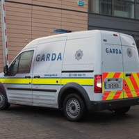 Father and son denied bail after being accused of spitting on two gardaí