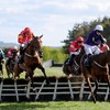 This year's Fairyhouse and Punchestown Festivals cancelled, National Hunt season closed